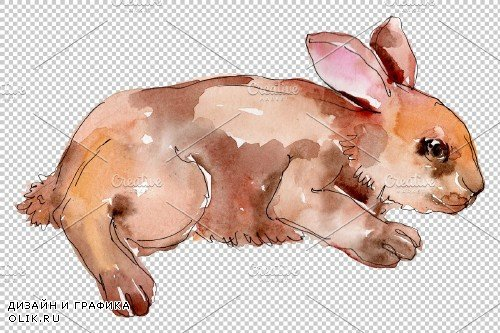 Farm animals: rabbit Watercolor png - 3742247