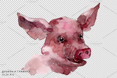 Farm animals: pig head Watercolor png - 3744882