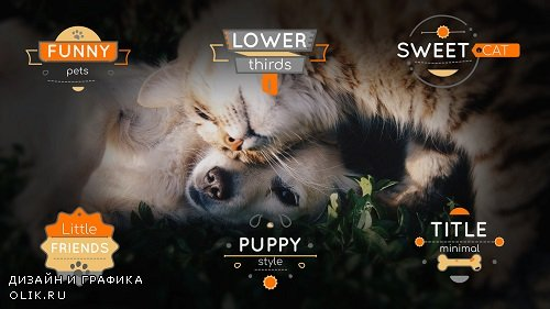 Title Pets 4K 223764 - After Effects Templates