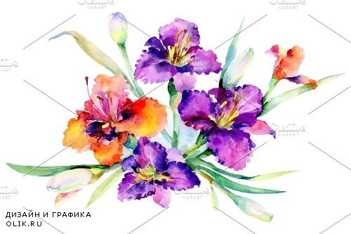 Bouquet Freesia watercolor png - 3755902