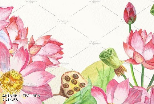 Lotus Flowers. Bouquets and Wreaths - 1036131