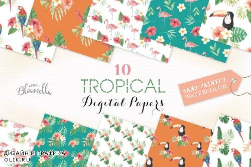 Tropical Seamless Patterns Exotic - 2479833