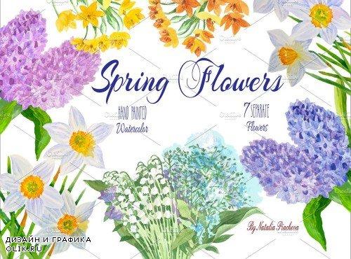 Spring Flowers - 507039