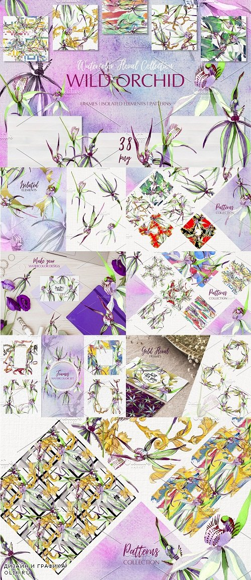 Wild orchid Watercolor png - 3767845