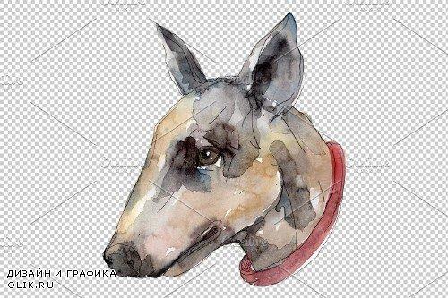 Farm animals dog head Watercolor - 3786481