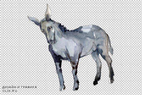 Agriculture: donkey Watercolor png - 3784176
