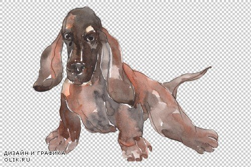 Farm animals: dogs Watercolor png - 3785884
