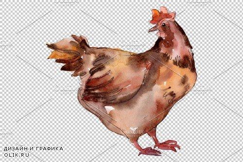 Farm animals:hen Watercolor png - 3785448