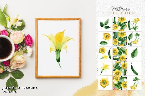 Yellow Brugmansia PNG watercolor set - 3098794