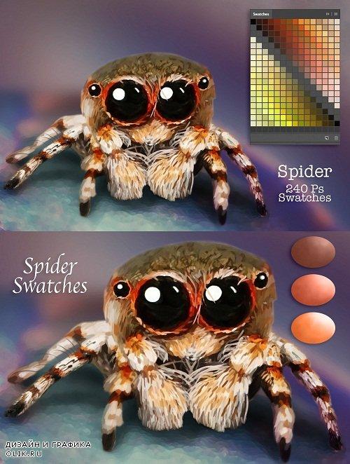 Spider Swatches - 3740909