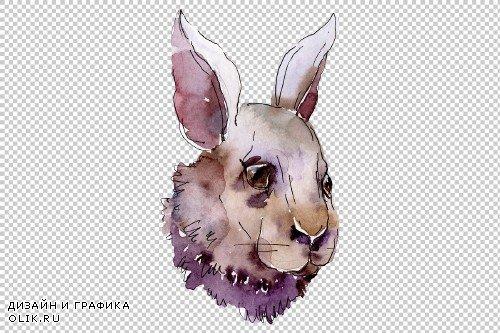 Farm animals: rabbit head Watercolor - 3800488