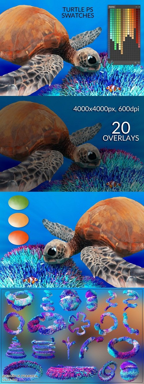 Turtle Swatches & Coral Overlays - 3766646