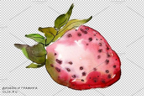 Berry strawberry watercolor png - 3814045