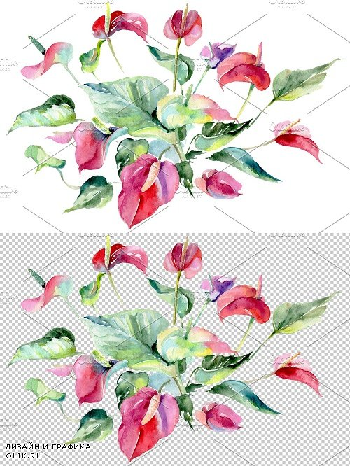 Spathiphyllum red Watercolor png - 3820861