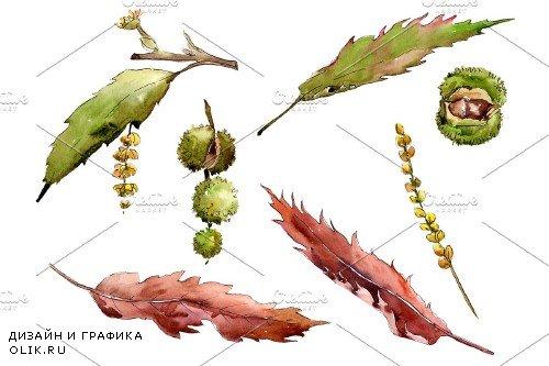 Autumn chestnut PNG watercolor plant - 3095171