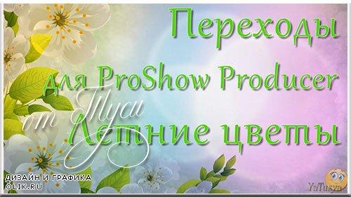 Переходы для ProShow Producer - Летние цветы