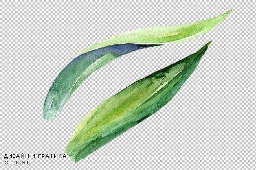 Irises blue Summer sky watercolor - 3836980