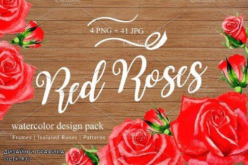 Wonderful red rose watercolor design - 3103648