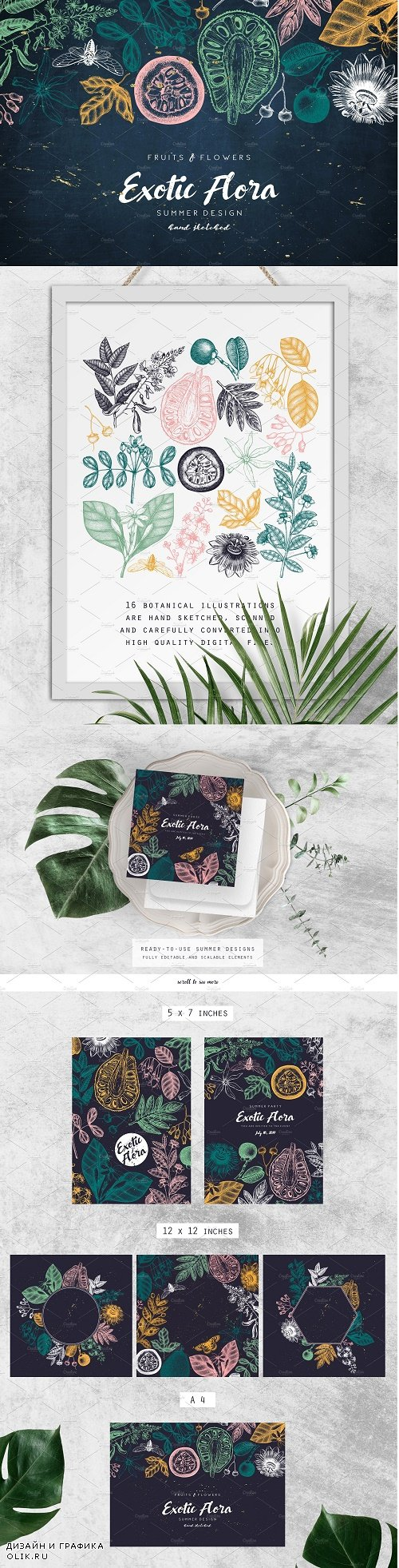 Exotic Plants Vector Collection - 3694923