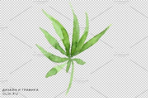 Leaves hemp plant watercolor png - 3844037
