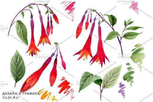 Orange-red Fuchsia watercolor png - 3844266