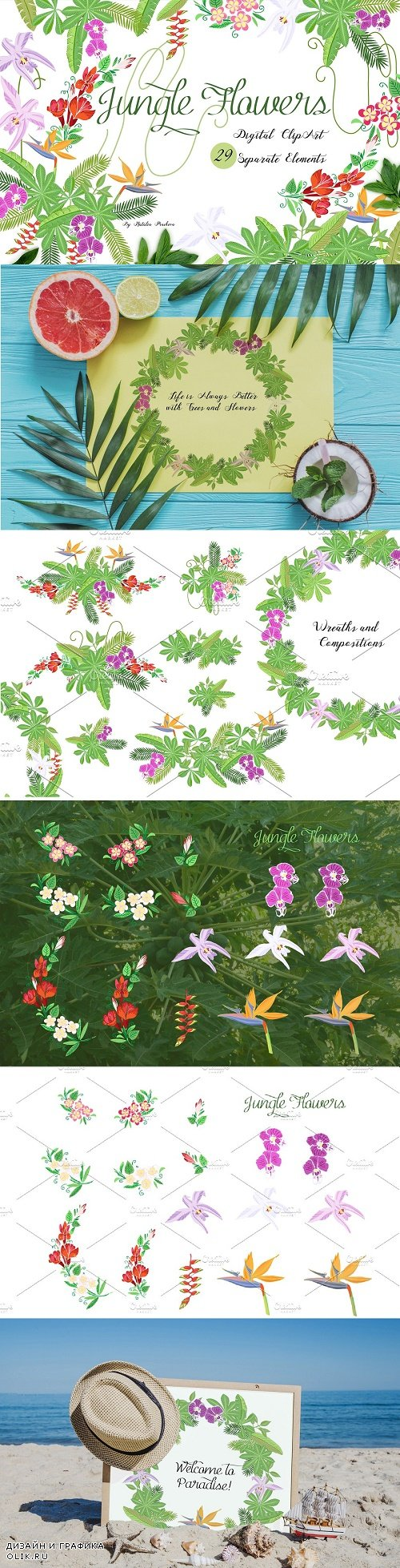 Jungle clipart with flowers - 3686966