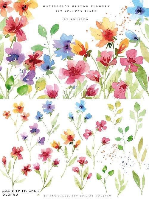 Meadow flowers, bouquet - 3639809