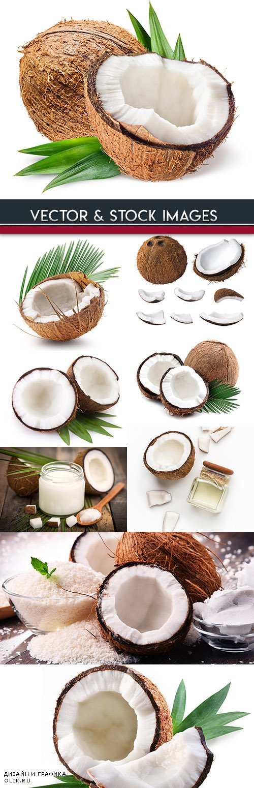 Coconut and milk tropical useful dessert