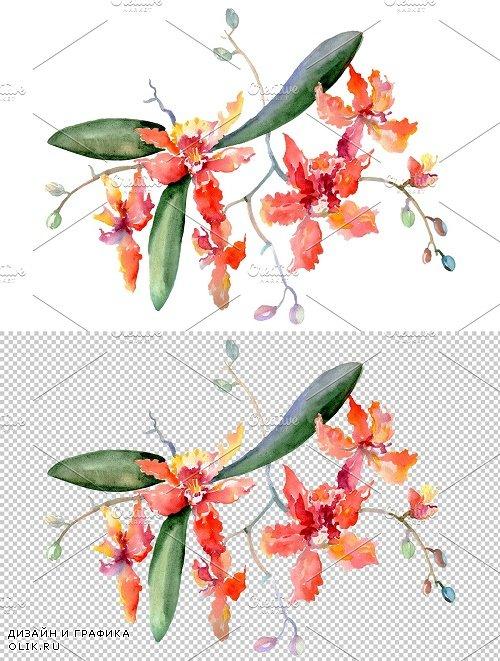 Bouquet Kaleidoscope watercolor png - 3836914