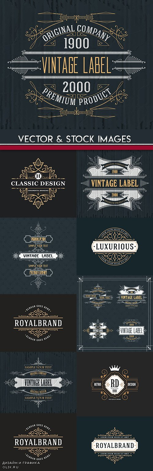 Vintage label and monograms element design illustration