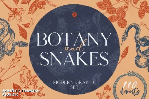 Botany and Snakes - 3811097