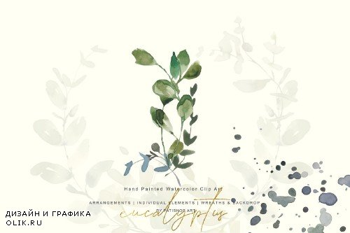 Watercolor Eucalyptus Clipart Set - 3863518