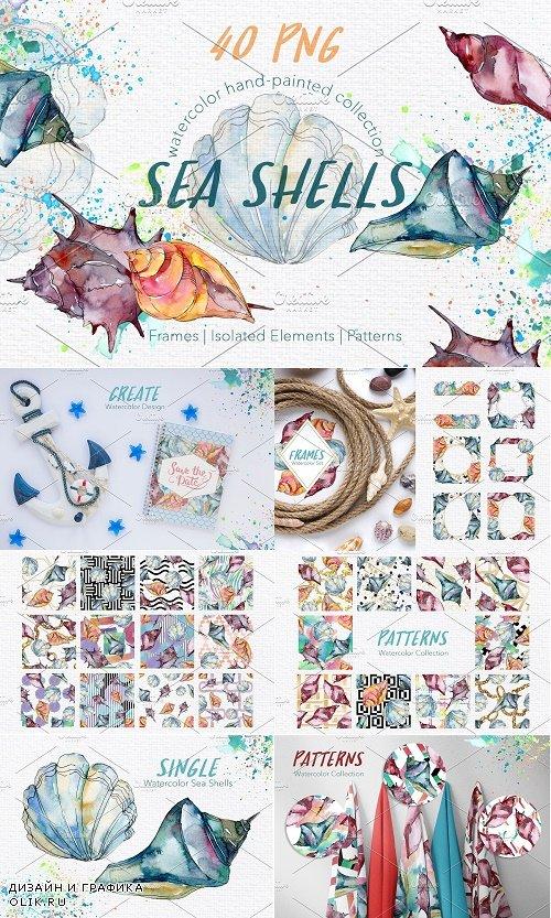 Sea Shells Watercolor png - 3864569