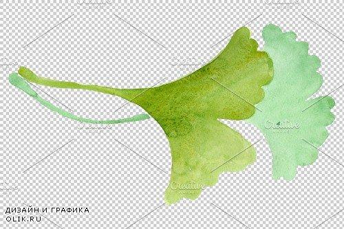 Ginkgo biloba plain green - 3864721