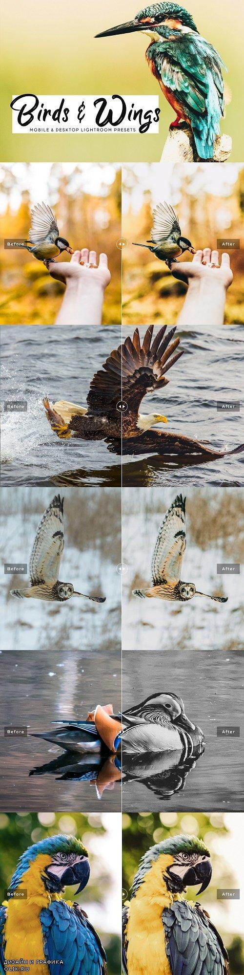 Birds & Wings LRM Presets Pack - 3812746