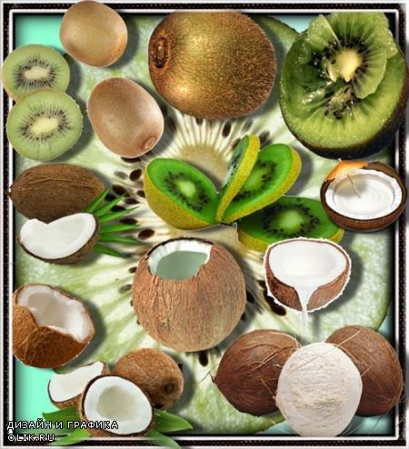 Клипарты без фона - Киви и кокосы