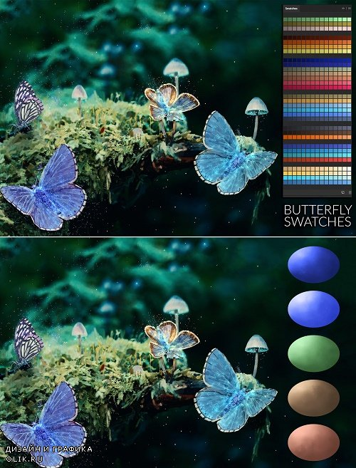 Butterfly Swatches - 3866406