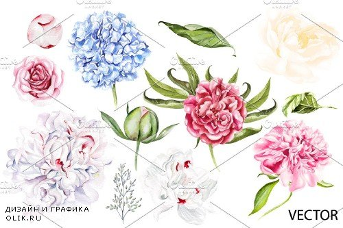 Watercolor Blooming Peony&Hudrangea - 3868446