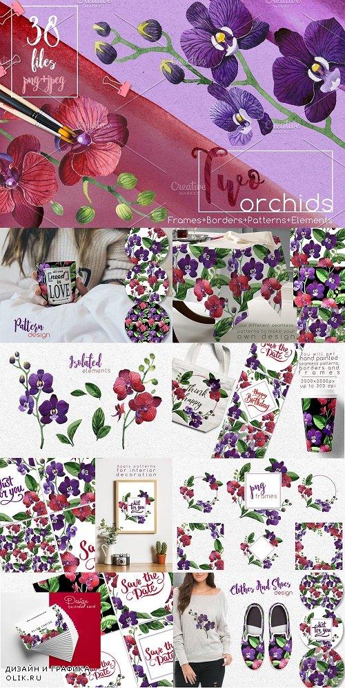 Two orchids PNG aquarelle set - 2561532