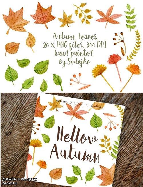 Autumn Leaves, clipart - 14831