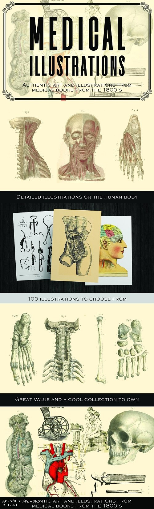 100 Vintage Medical Illustrations - 3896654