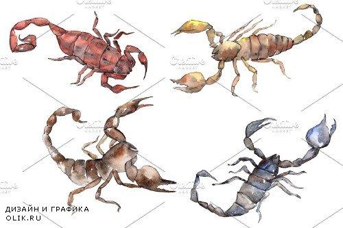 Animal scorpion watercolor png - 3899623