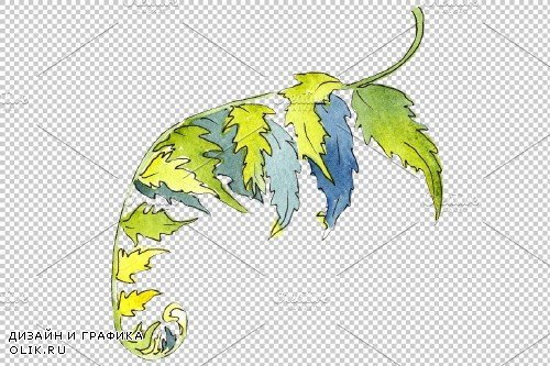 Fern plant watercolor png - 3899051