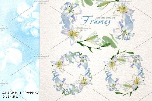 Lilies White Watercolor png - 3903767