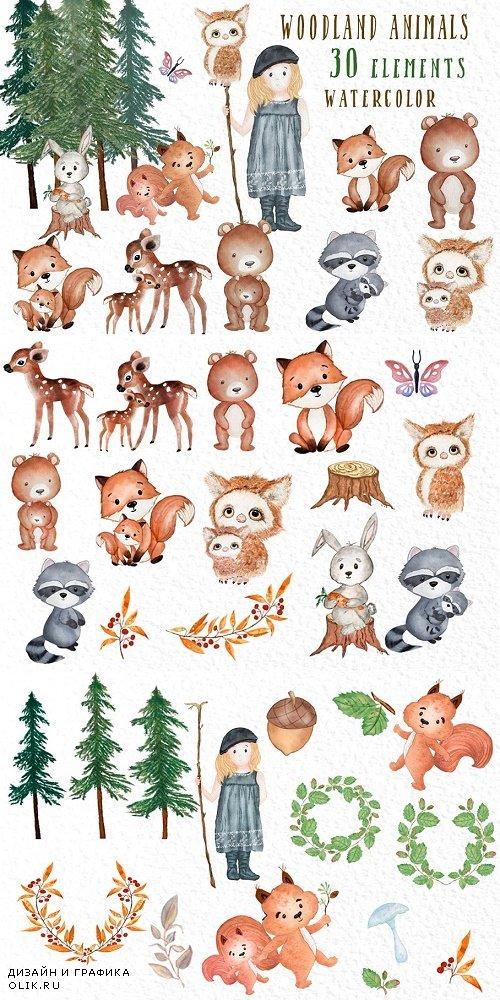 Forest Friends Woodland animals - 3909028