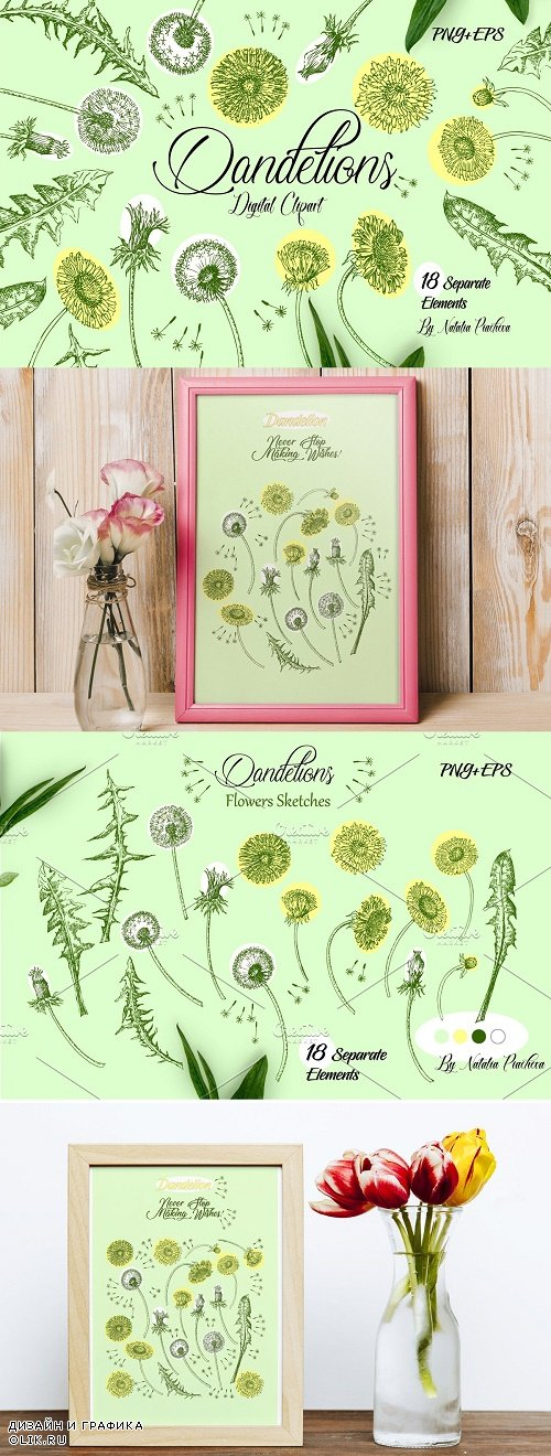 Dandelions Digital Clipart - 3904421