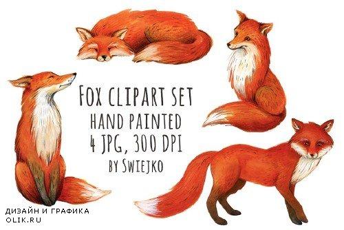 Fox illustration, clipart - 324932