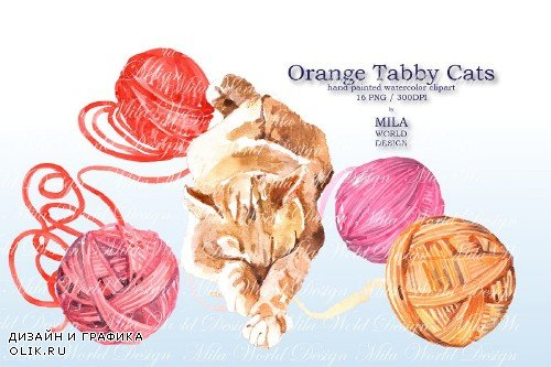 Orange tabby cat - 3839377