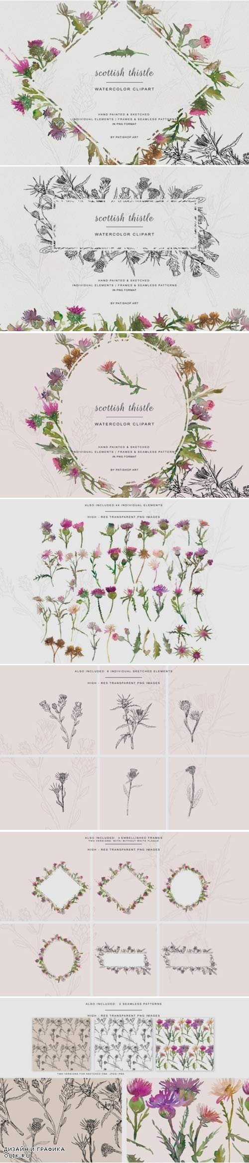 Hand Painted & Sketched Thistle - 3607253
