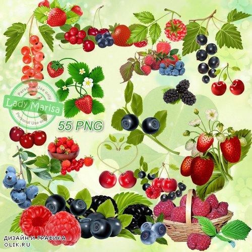 Клипарт на прозрачном фоне - Летние ягоды